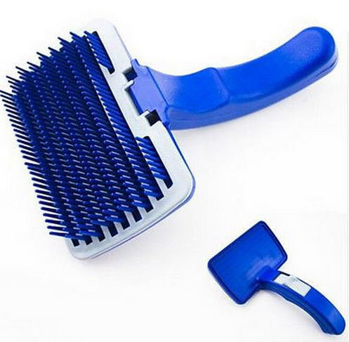 Blue_dog_shedding_brush