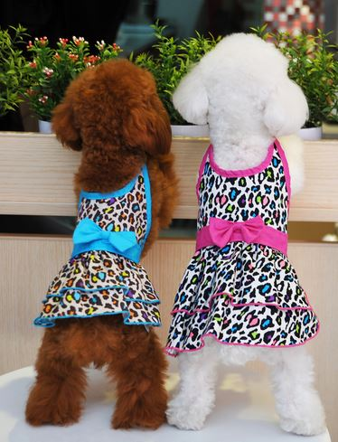 Leopard Printed Dog Dress