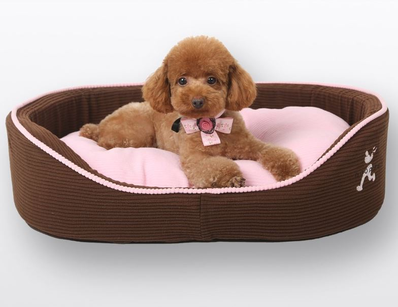 Brown-Pink Dog Bed