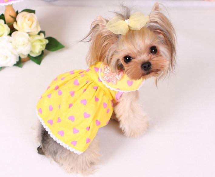 butterfly_dog_dress3