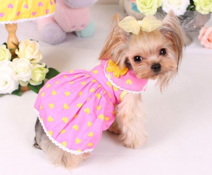 butterfly_dog_dress5