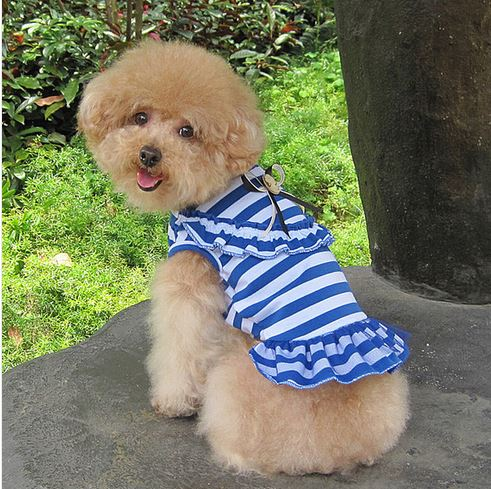 charming_striped_dog_dress_blue2