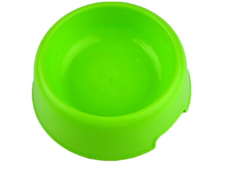 colorful_plastic_dog_bowl_green