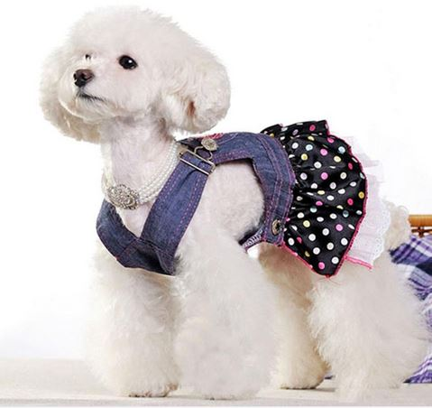 cute_denim_dog_dress3