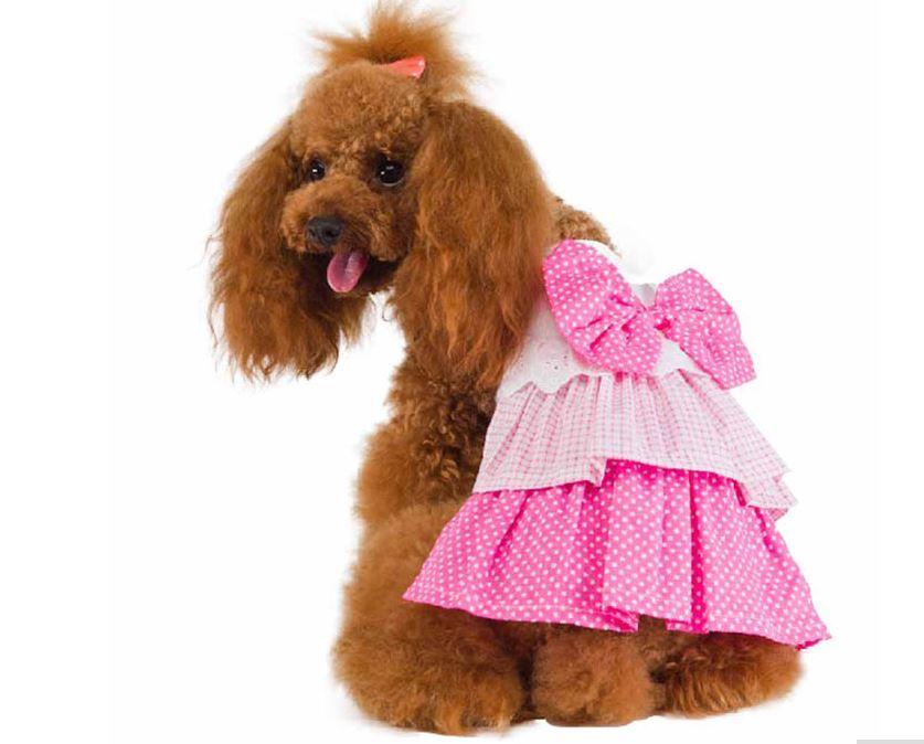 cute_dog_dress_with_polka_dot_bow4