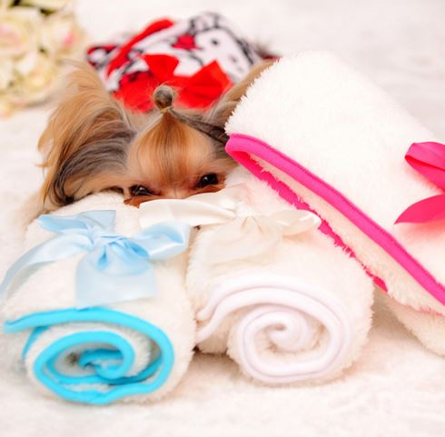 Dog Blanket With Bow