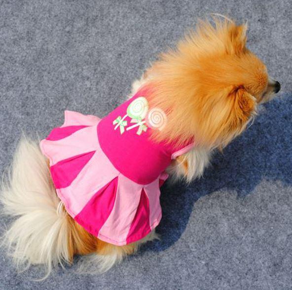 dog_lollipop_dress5