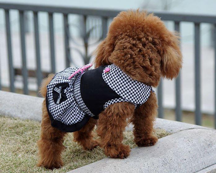 elegant_black_dog_dress4
