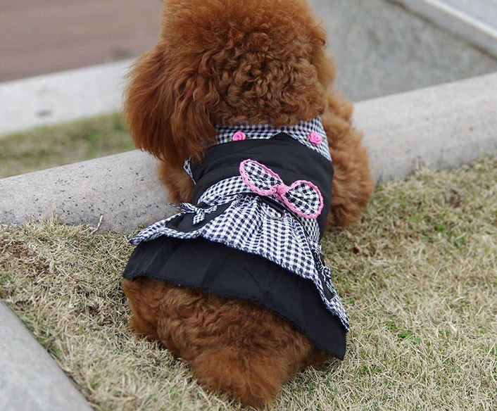 elegant_black_dog_dress5