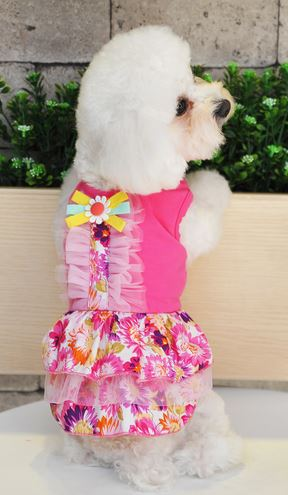 floral_printed_dog_dress3