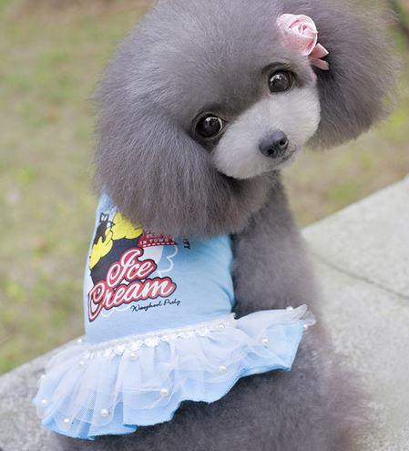 ice_cream_dog_dress_blue