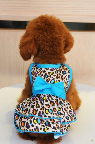 leopard_printed_dog_dress_blue