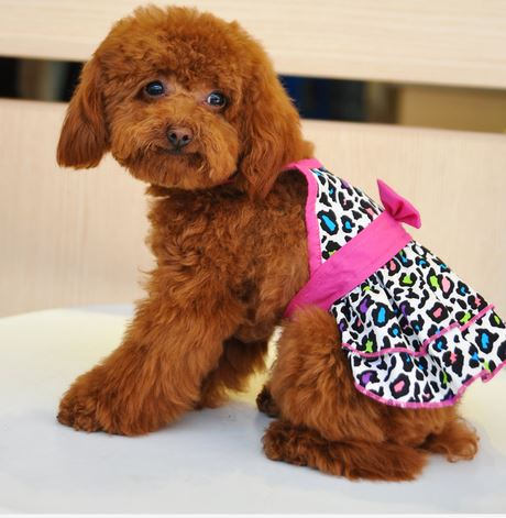 leopard_printed_dog_dress_pink2