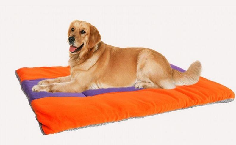 orange-purple dog mat7