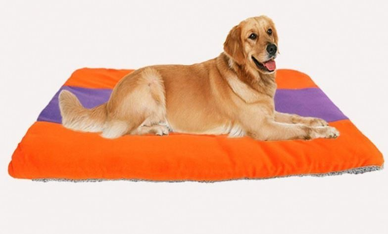 orange-purple dog mat9