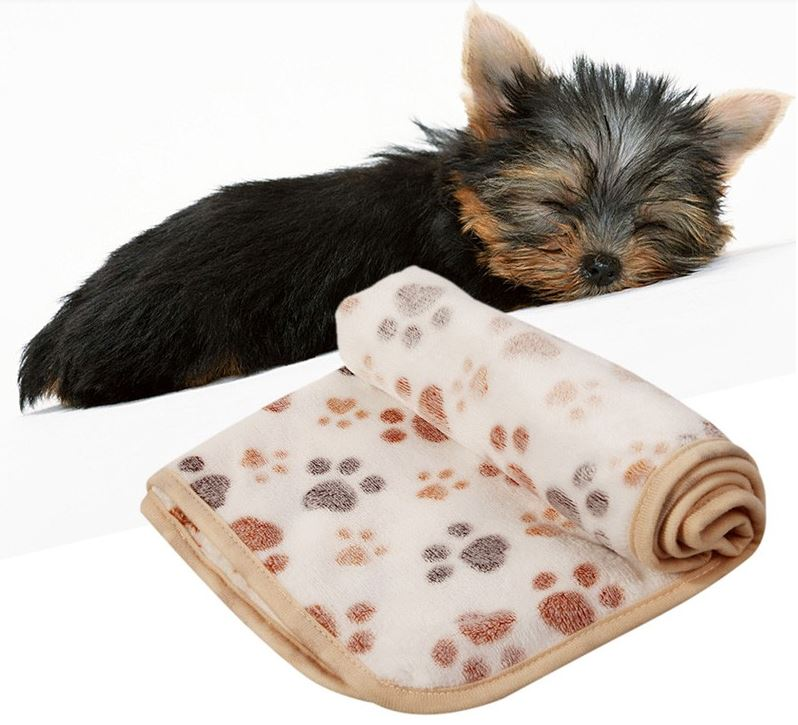 Paw Printed Dog Blanket