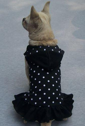 polka_dot_dog_dress_black