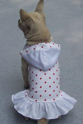 polka_dot_dog_dress_white