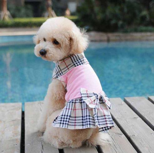 pretty_dog_dress_with_bow_10
