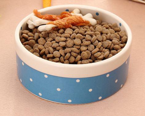 princess_prince_dog_bowl_blue