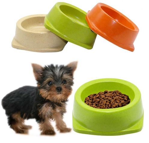 Small Size Dog Bowl