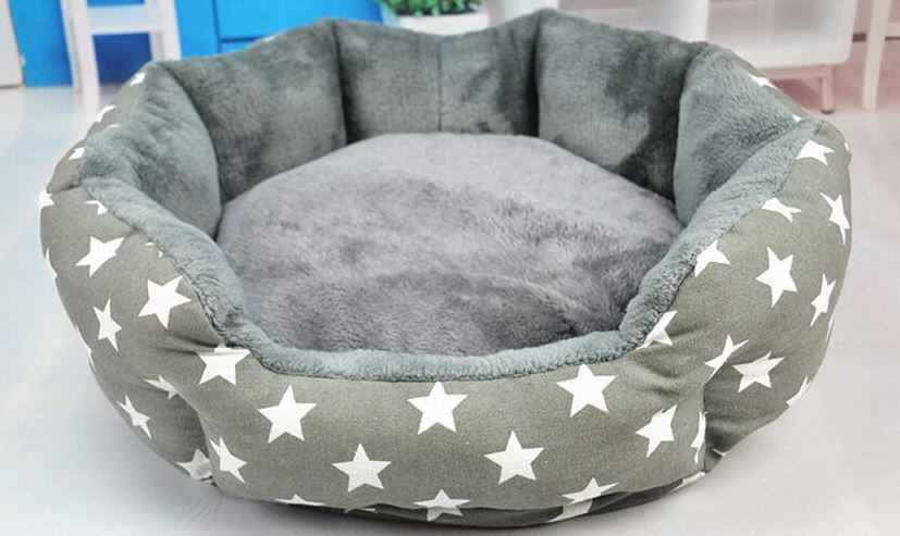 Star Printed Dog Bed