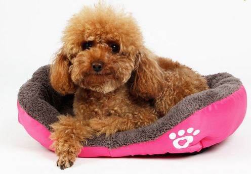 warm_and_soft_dog_bed2