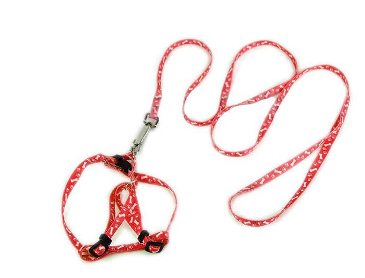 bone_printed_harness_with_leash_red