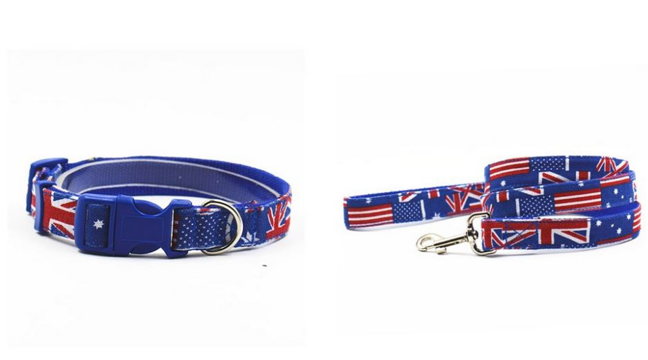 british_style_collar_with_leash1
