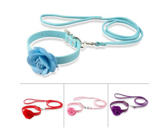 Collar And Leash With Rose