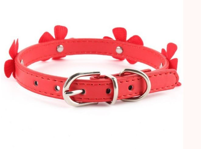 collar_with_flower_red