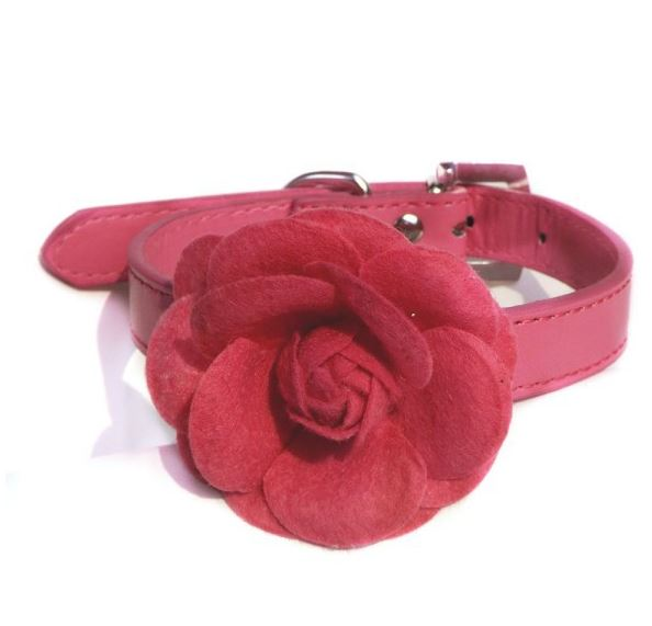collar_with_rose_hot_pink