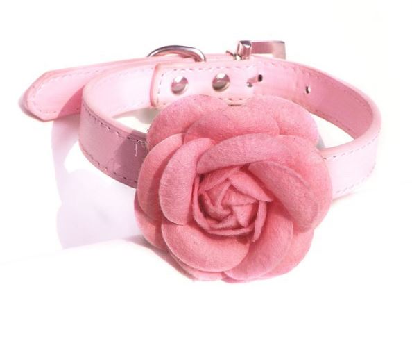 collar_with_rose_pink