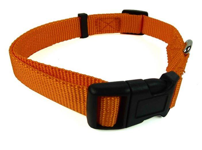 colorful_dog_collar_with_leash_orange