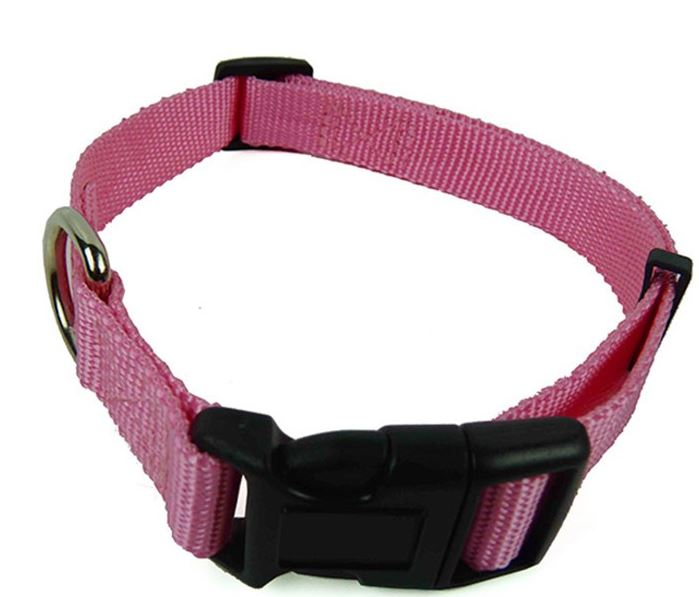 colorful_dog_collar_with_leash_pink