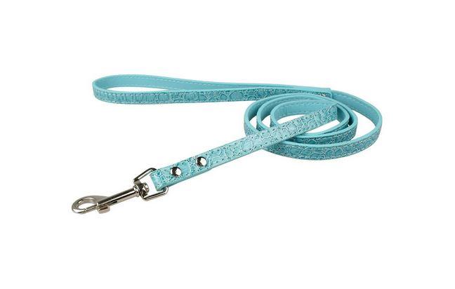 colorful_dog_leash_blue