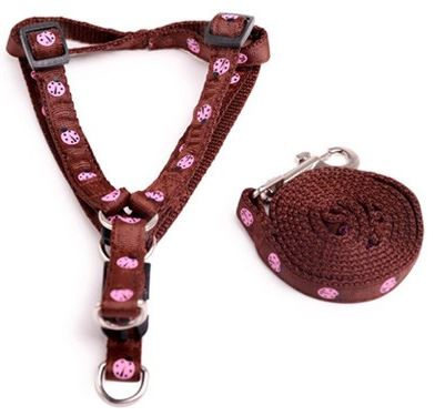 colorful_harness_with_leash_brown