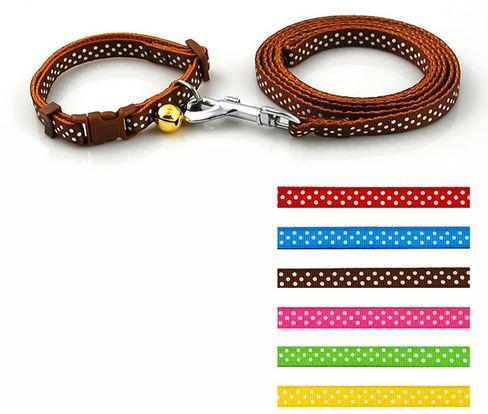 colorful_polka_dot_collar_with_leash_brown