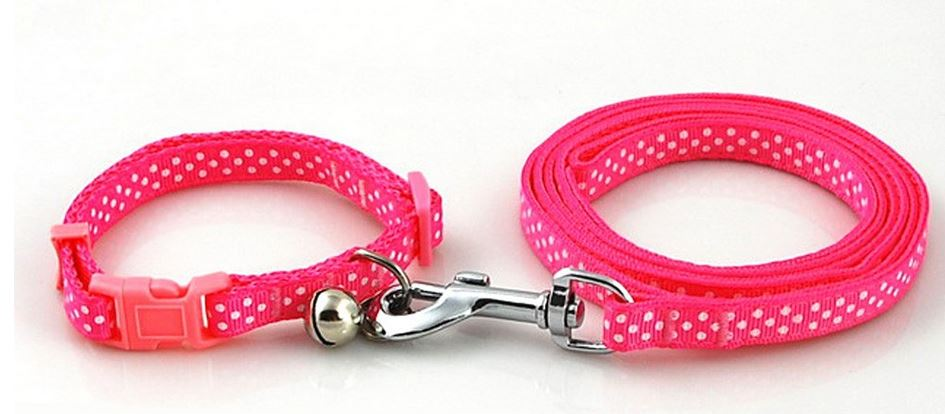 Colorful Polka Dot Collar With Leash