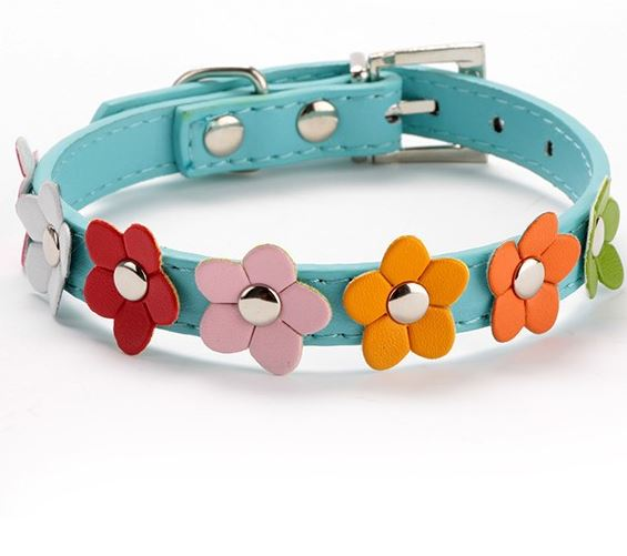 flower_dog_collar_blue