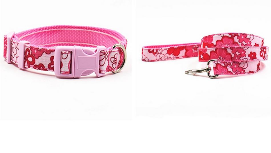 Flower Printed Dog Collar With Leash