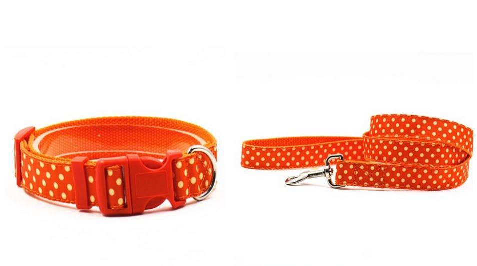 lovely_polka_dot_collar_with_leash_orange
