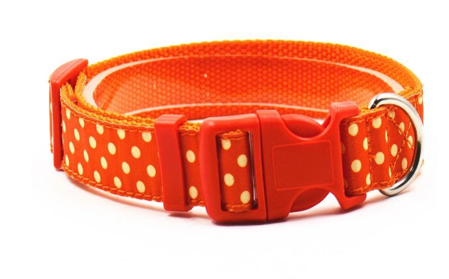 lovely_polka_dot_collar_with_leash_orange2