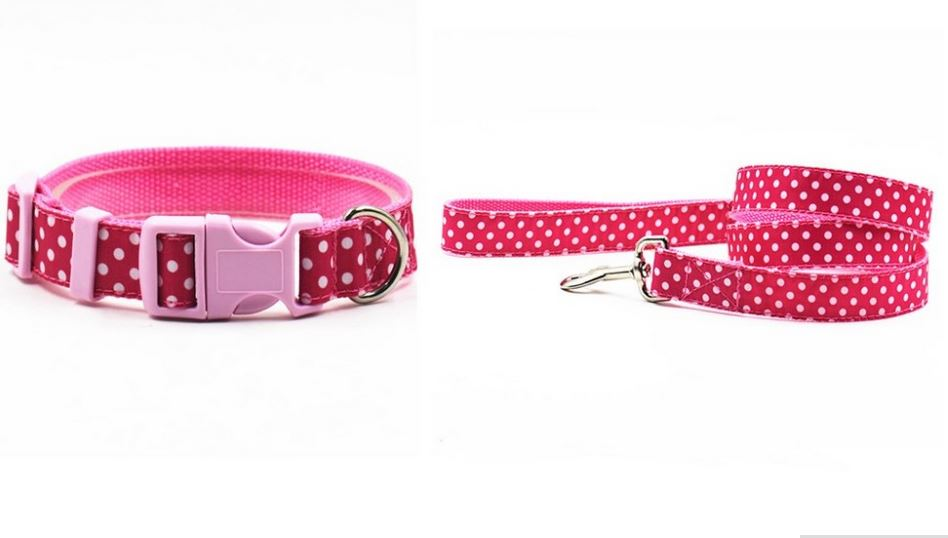 Lovely Polka Dot Collar With Leash