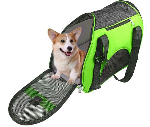 pink_or_green_dog_carrier8