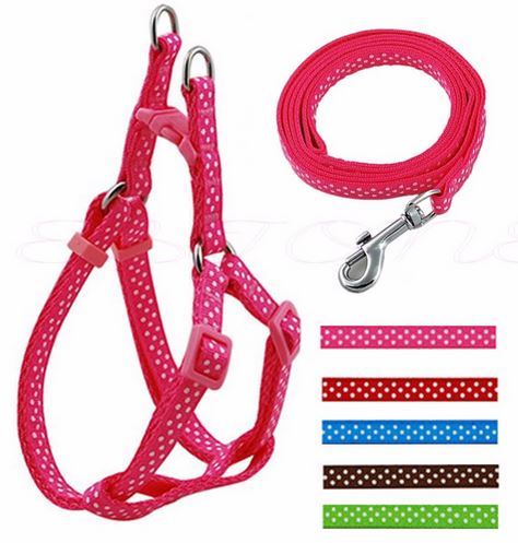 polka_dot_harness_with_leash_pink