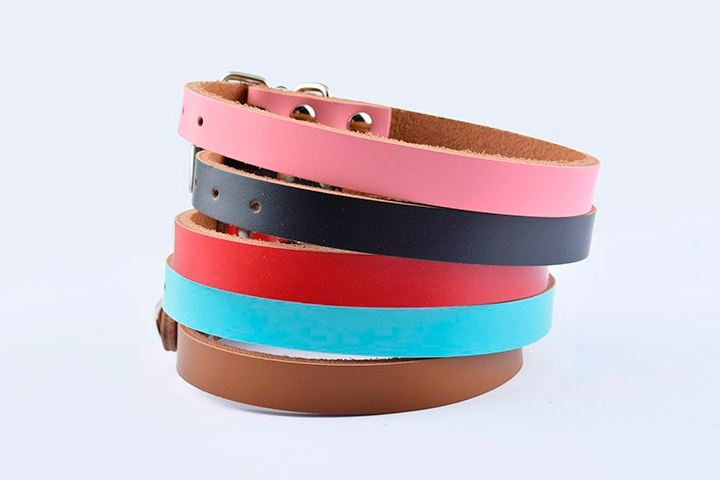 simple_colorful_dog_collar4