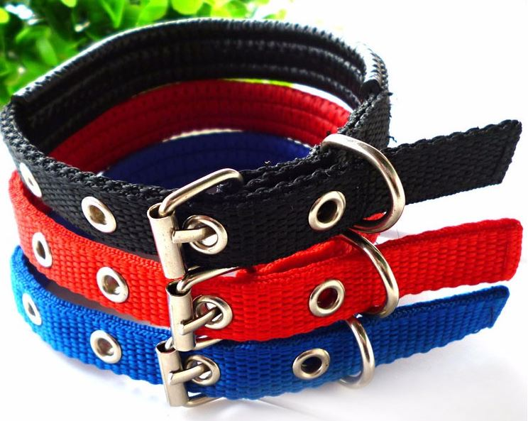 simple_dog_collar2