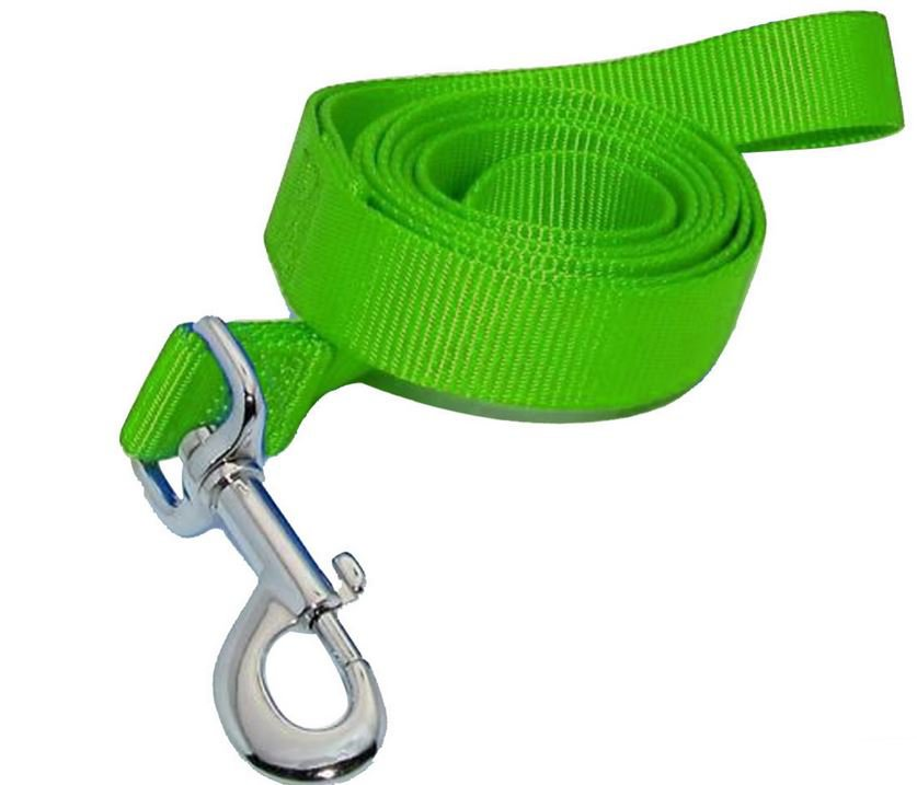 simple_dog_leash_green