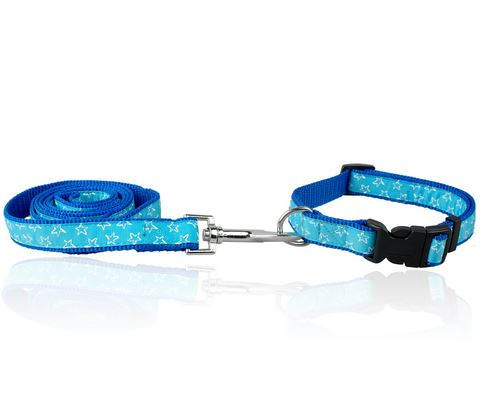 star_printed_dog_collar_with_leash_blue